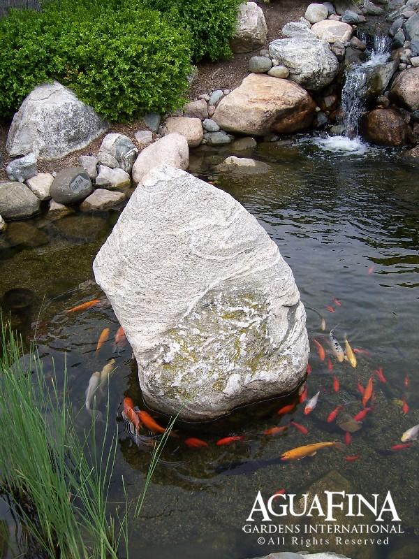 Water Gardens-00001