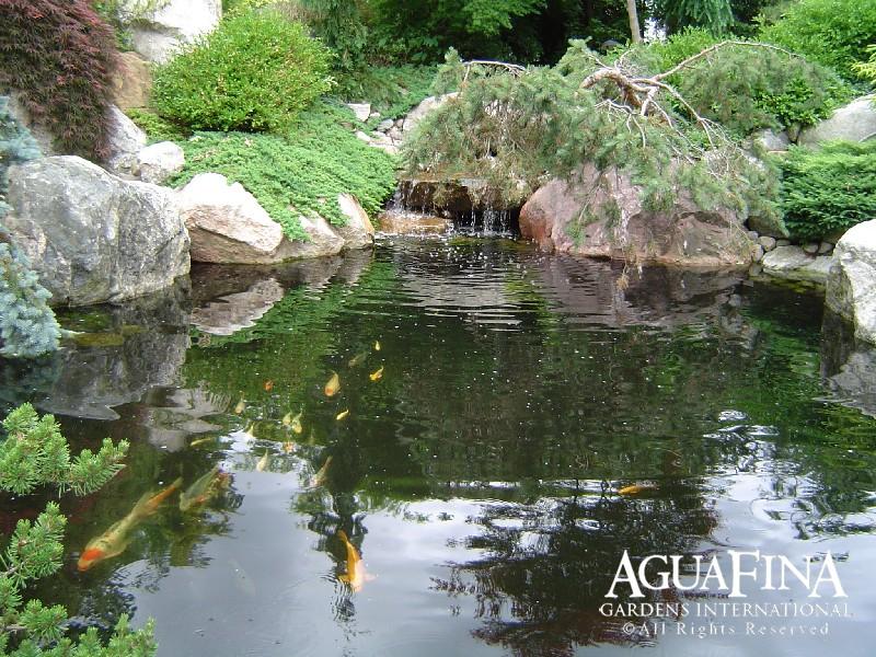 Water Gardens-00004