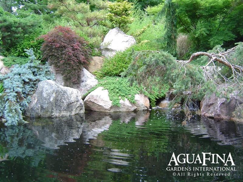 Water Gardens-00005